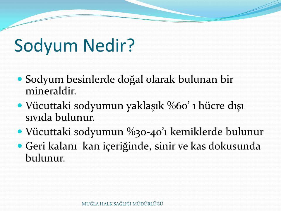 Sodyum Nedir Sodyum besinlerde doğal olarak bulunan bir mineraldir.