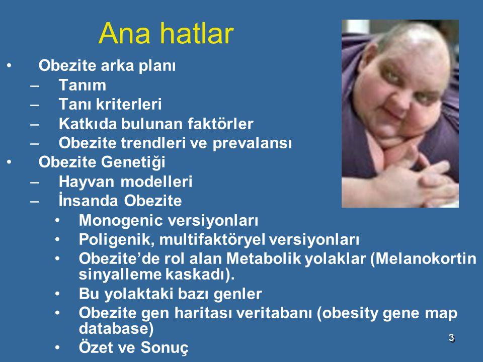 Ana hatlar Obezite arka planı Tanım Tanı kriterleri