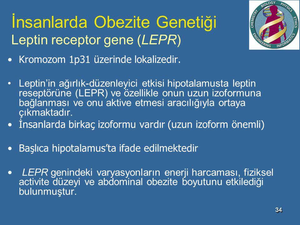 İnsanlarda Obezite Genetiği Leptin receptor gene (LEPR)
