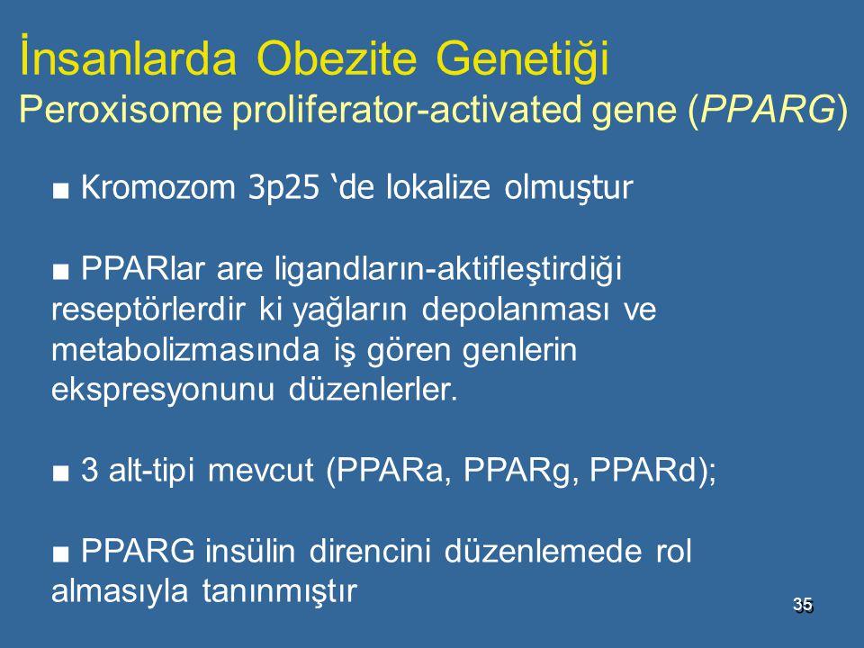 İnsanlarda Obezite Genetiği Peroxisome proliferator-activated gene (PPARG)