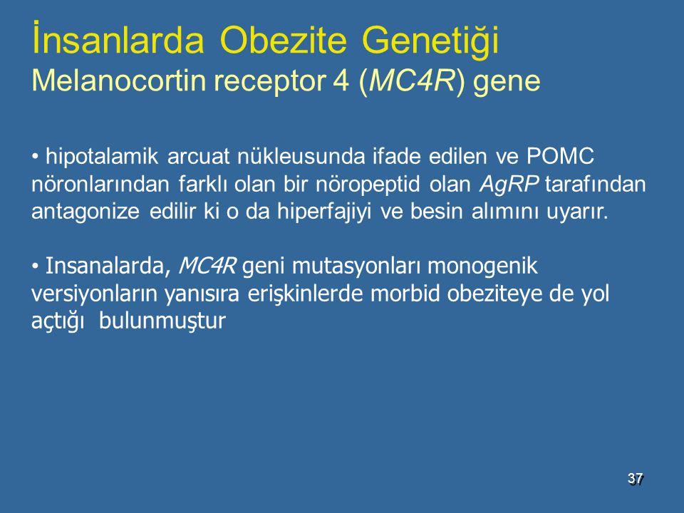 İnsanlarda Obezite Genetiği Melanocortin receptor 4 (MC4R) gene