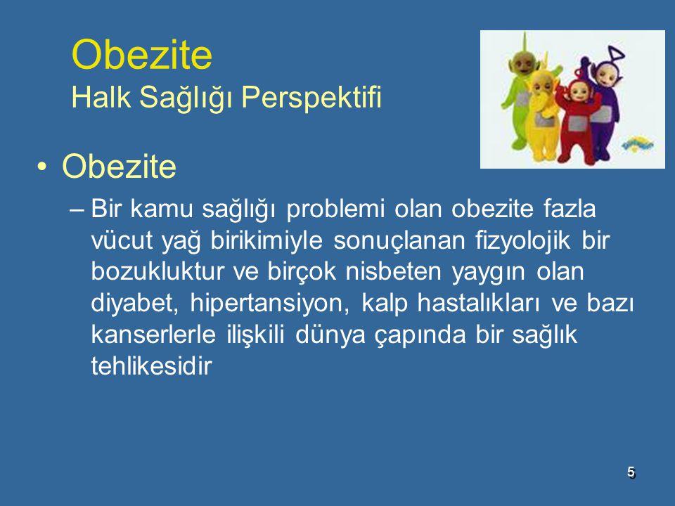 Obezite Halk Sağlığı Perspektifi