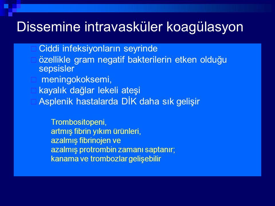 Dissemine intravasküler koagülasyon