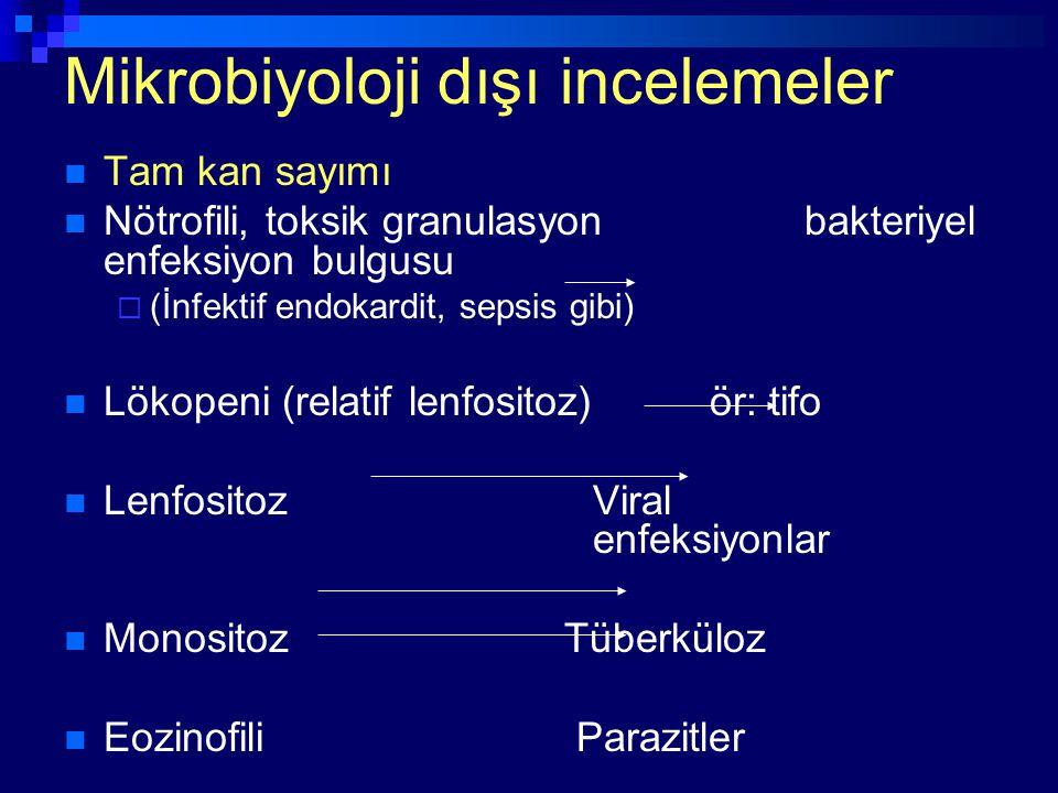 Mikrobiyoloji dışı incelemeler