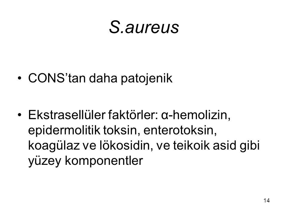 S.aureus CONS'tan daha patojenik