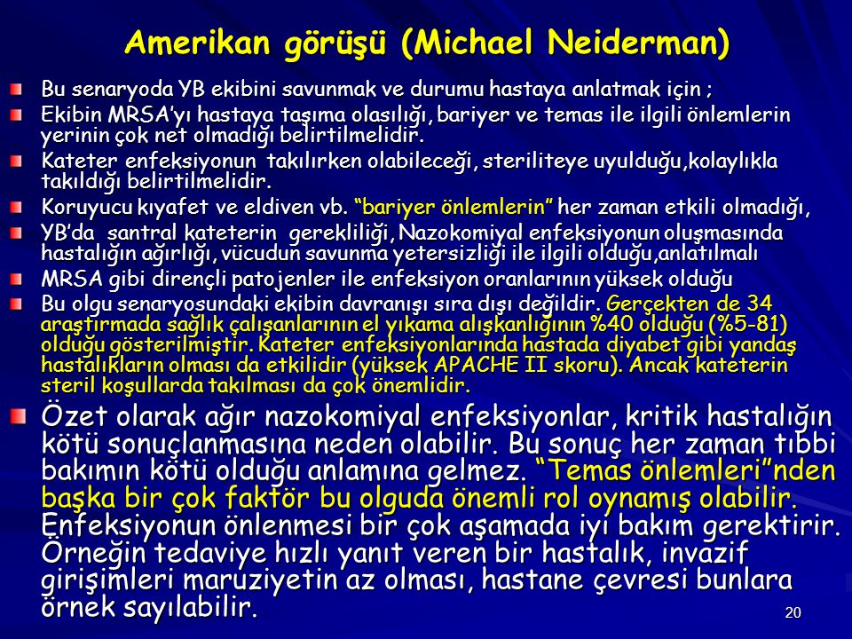 Amerikan görüşü (Michael Neiderman)