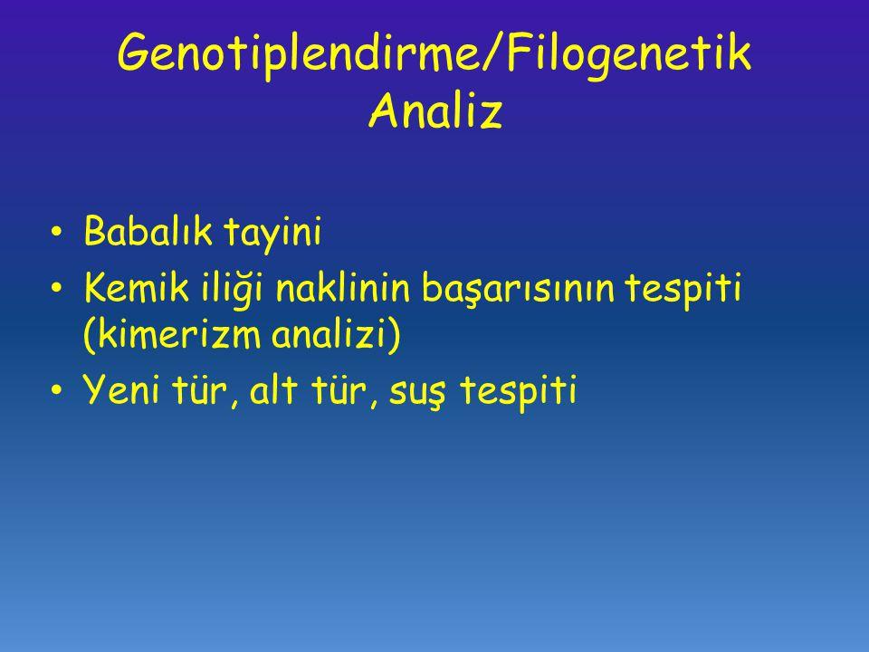 Genotiplendirme/Filogenetik Analiz