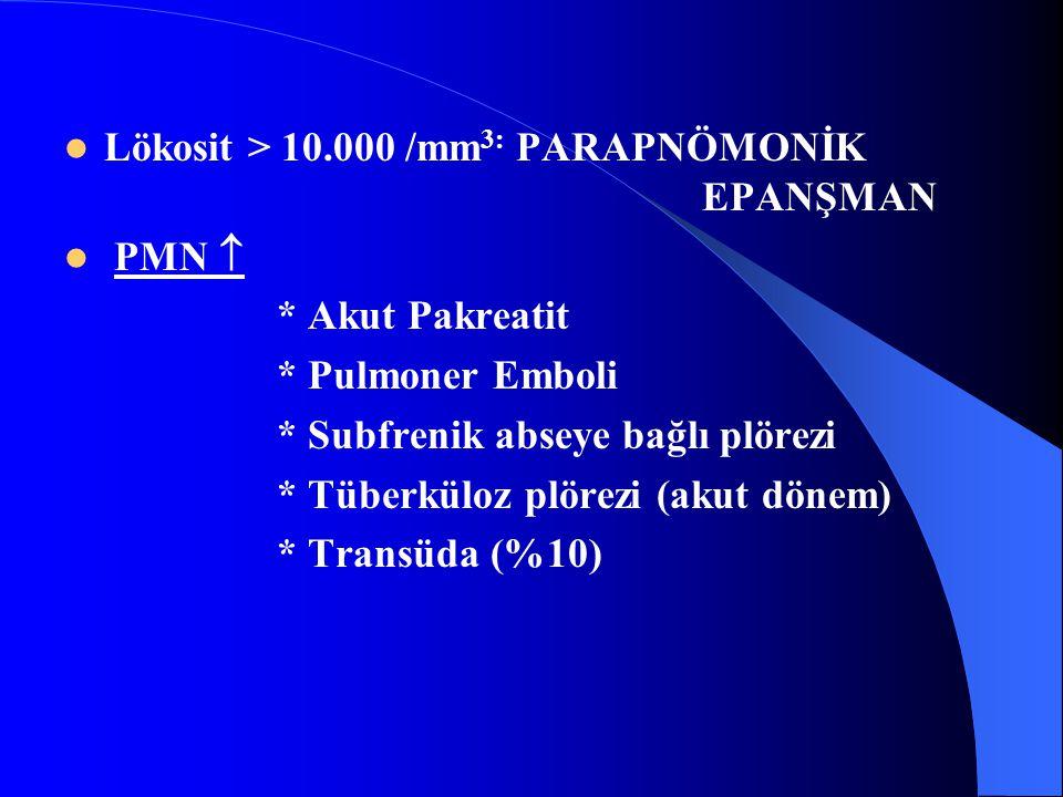 Lökosit > 10.000 /mm3: PARAPNÖMONİK EPANŞMAN