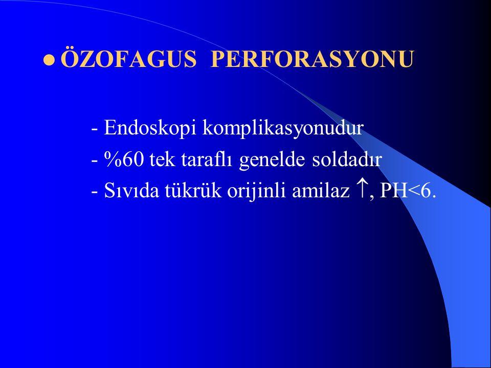 ÖZOFAGUS PERFORASYONU