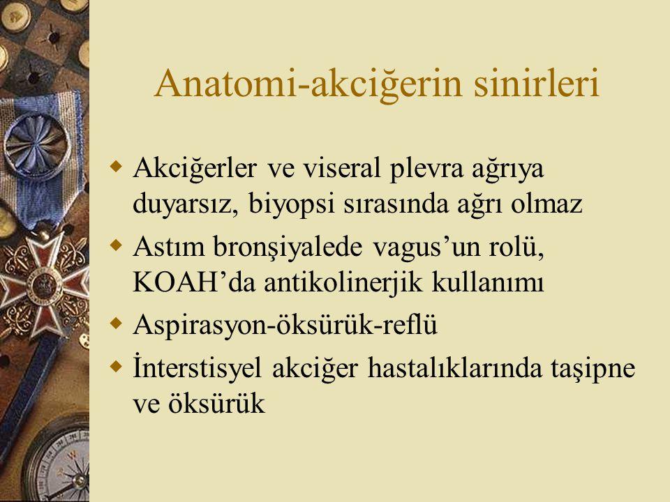 Anatomi-akciğerin sinirleri
