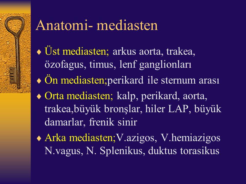 Anatomi- mediasten Üst mediasten; arkus aorta, trakea, özofagus, timus, lenf ganglionları. Ön mediasten;perikard ile sternum arası.