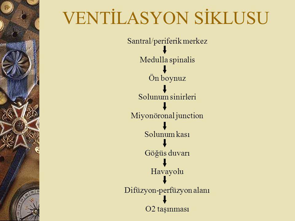 VENTİLASYON SİKLUSU Santral/periferik merkez Medulla spinalis