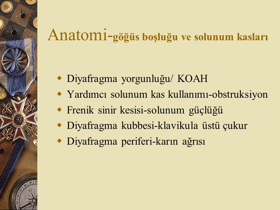 Anatomi-göğüs boşluğu ve solunum kasları