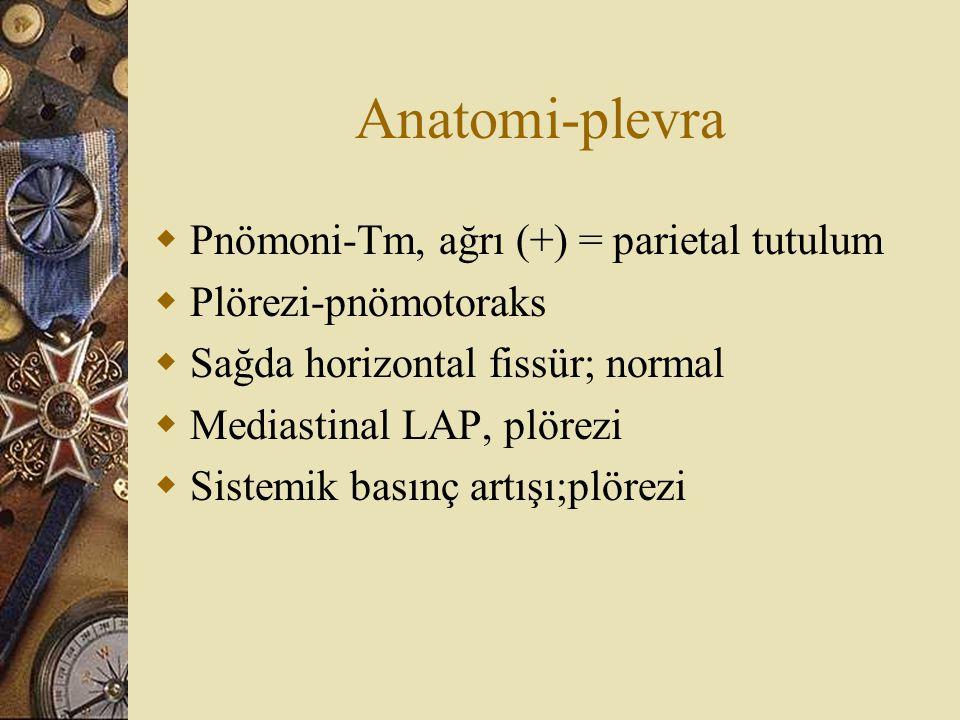 Anatomi-plevra Pnömoni-Tm, ağrı (+) = parietal tutulum