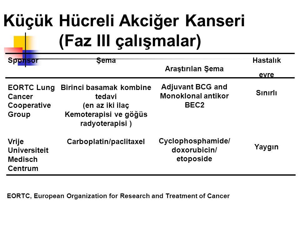 Küçük Hücreli Akciğer Kanseri (Faz III çalışmalar)