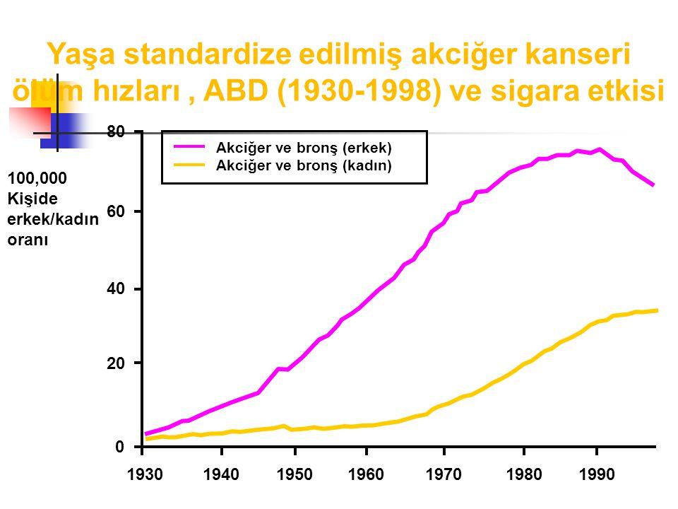 Yaşa standardize edilmiş akciğer kanseri ölüm hızları , ABD (1930-1998) ve sigara etkisi