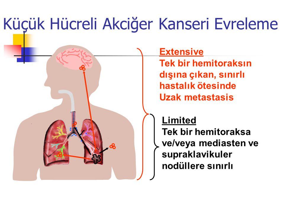 Küçük Hücreli Akciğer Kanseri Evreleme