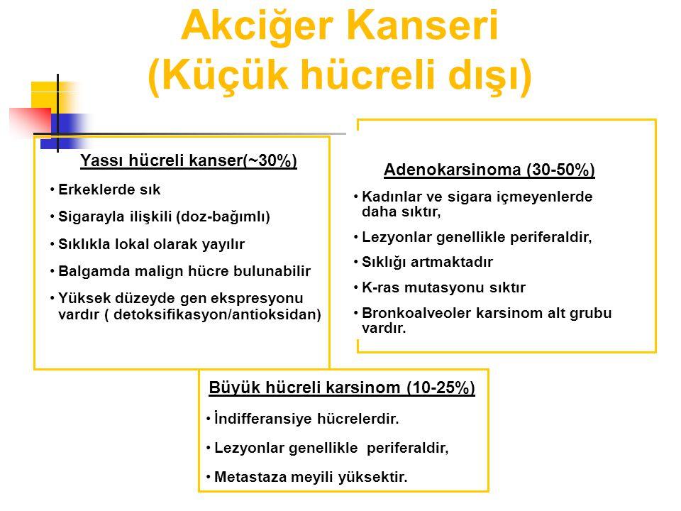 Yassı hücreli kanser(~30%)