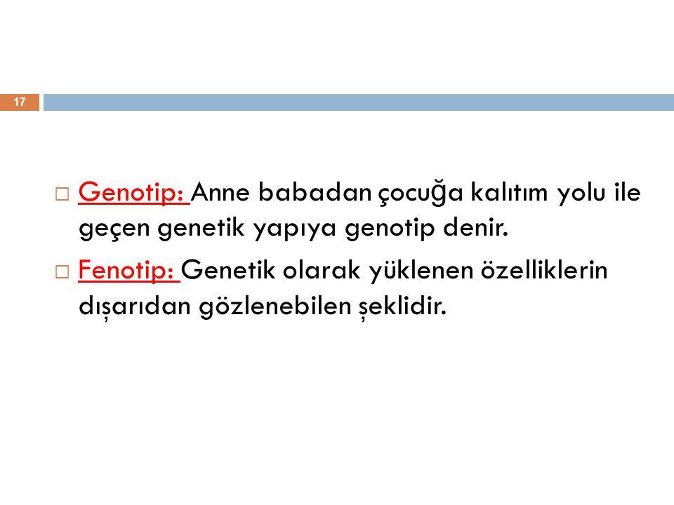 Genotip: Anne babadan çocuğa kalıtım yolu ile geçen genetik yapıya genotip denir.