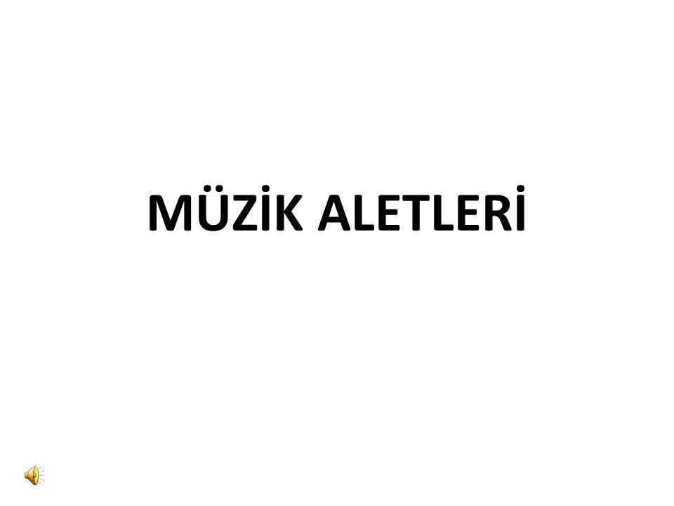 MÜZİK ALETLERİ