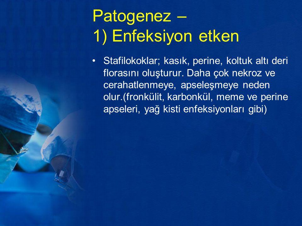 Patogenez – 1) Enfeksiyon etken