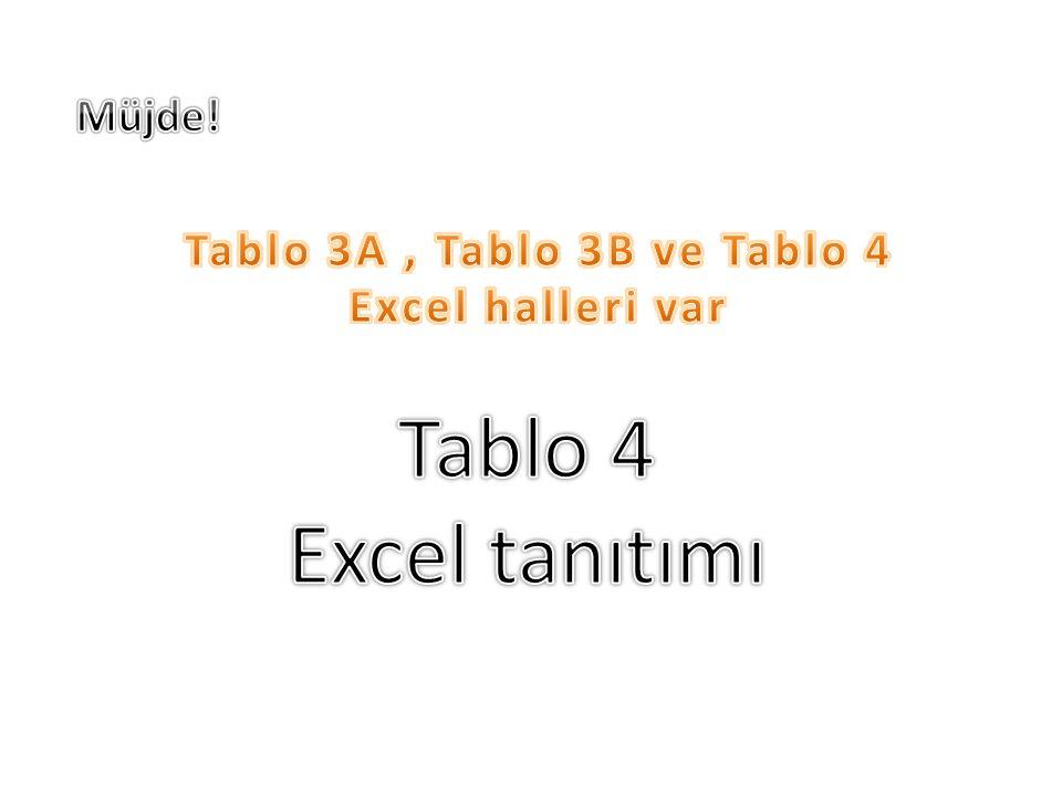 Tablo 4 Excel tanıtımı Müjde! Tablo 3A , Tablo 3B ve Tablo 4