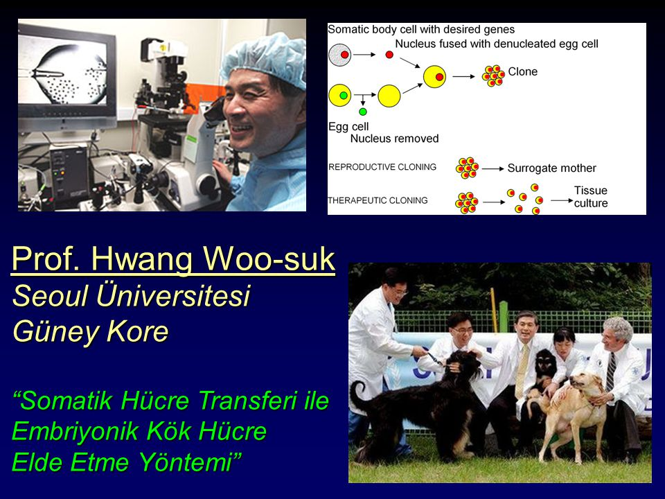 Prof. Hwang Woo-suk Seoul Üniversitesi Güney Kore