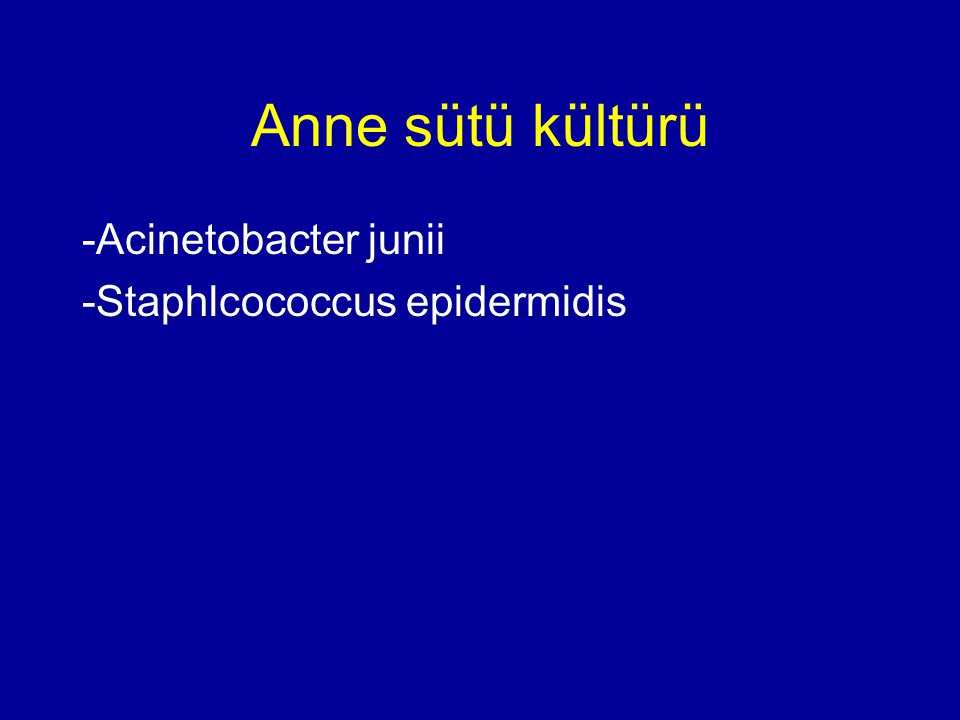 Anne sütü kültürü -Acinetobacter junii -Staphlcococcus epidermidis