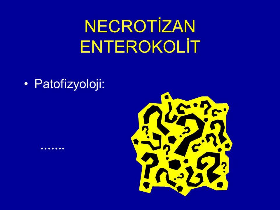 NECROTİZAN ENTEROKOLİT