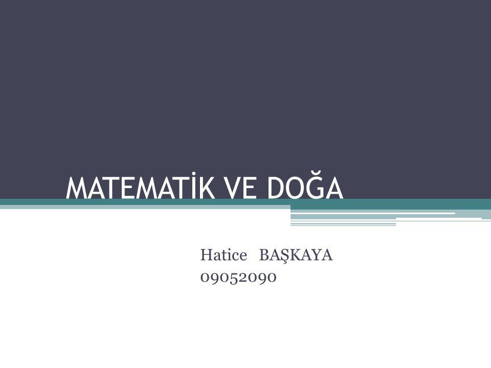 MATEMATİK VE DOĞA Hatice BAŞKAYA 09052090
