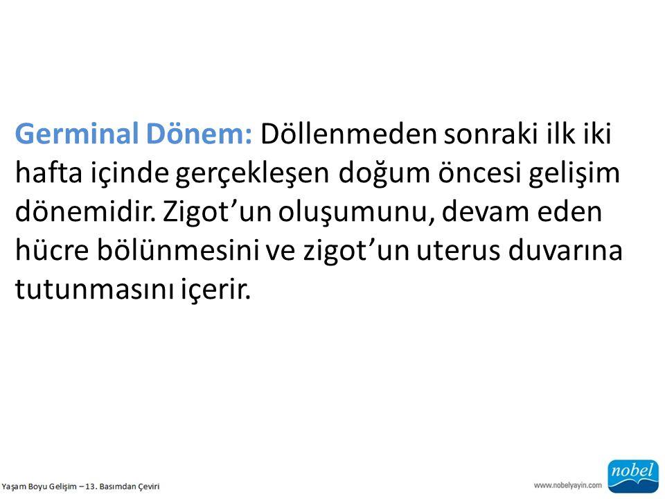 Germinal Dönem: Döllenmeden sonraki ilk iki hafta içinde gerçekleşen doğum öncesi gelişim dönemidir.