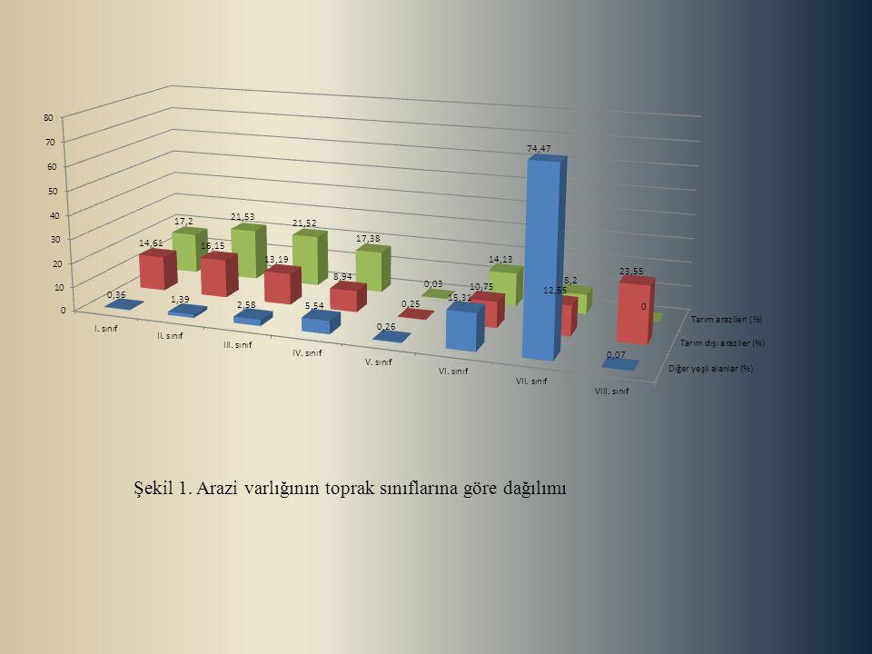 Şekil 1. Arazi varlığının toprak sınıflarına göre dağılımı