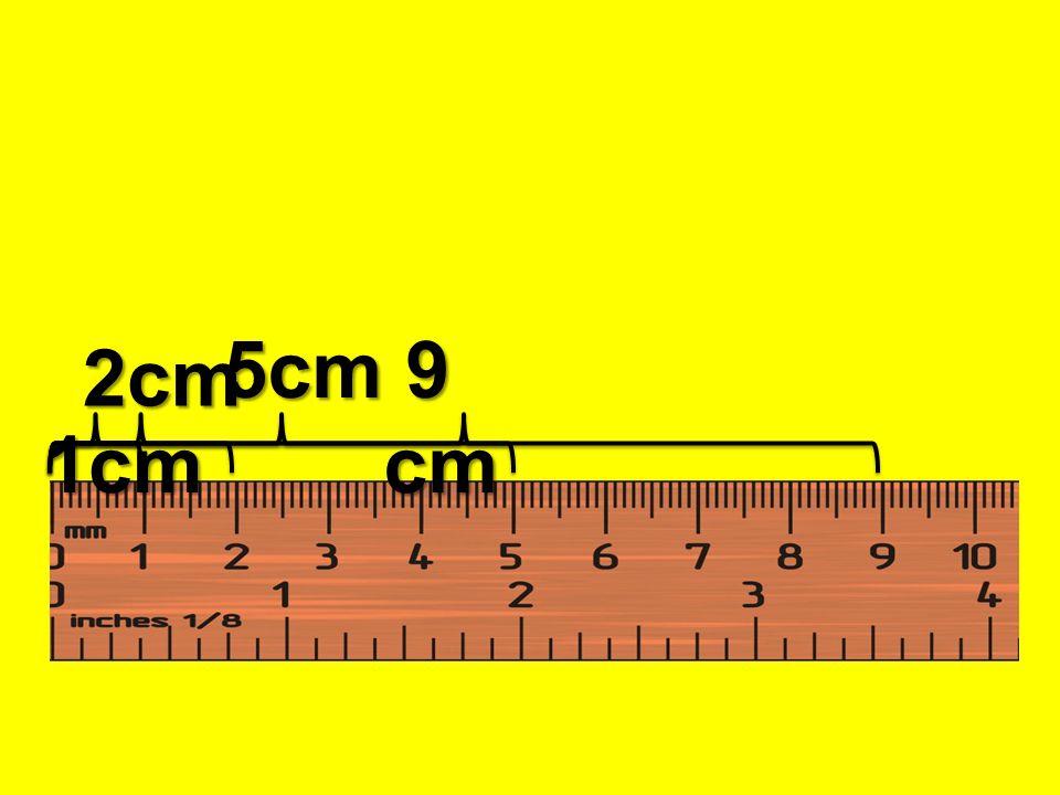1cm 5cm 9 cm 2cm