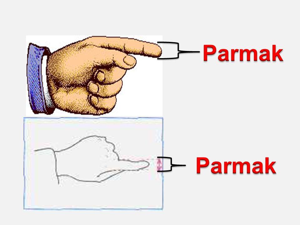 Parmak Parmak