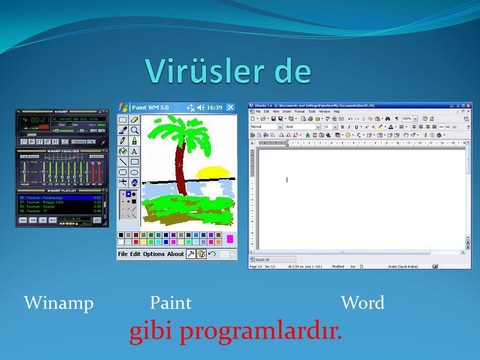 Virüsler de Winamp Paint Word gibi programlardır.