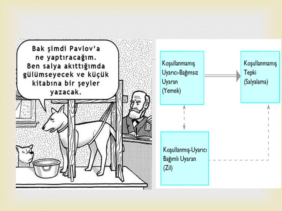 Klasik koşullanma kuramı, Rus bilim adamı olan Ivan Pavlov ortaya çıkarıp geliştirmiştir.