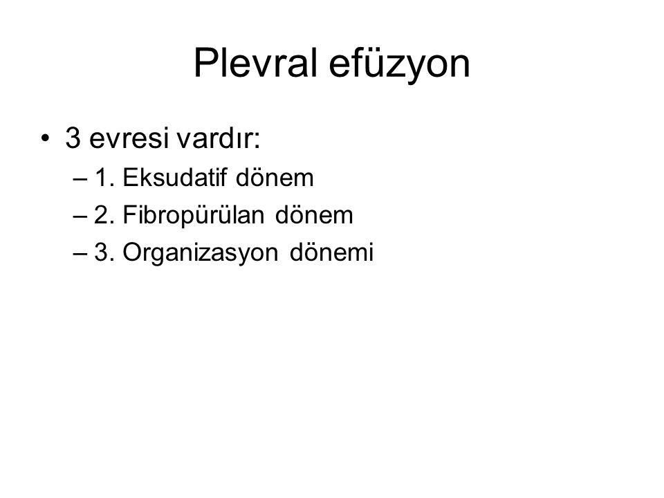 Plevral efüzyon 3 evresi vardır: 1. Eksudatif dönem