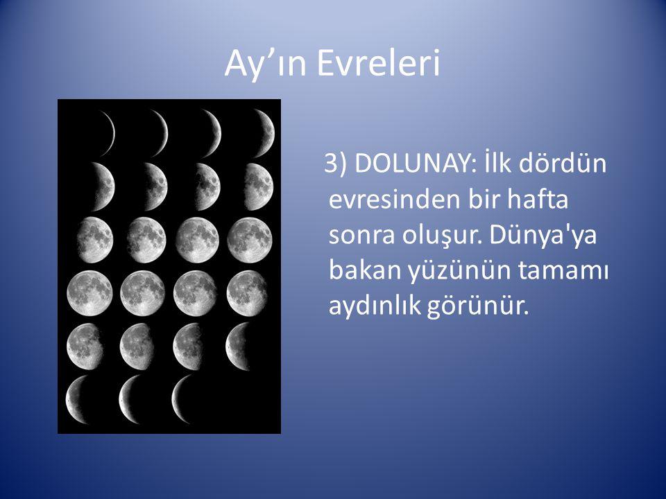 Ay'ın Evreleri 3) DOLUNAY: İlk dördün evresinden bir hafta sonra oluşur.