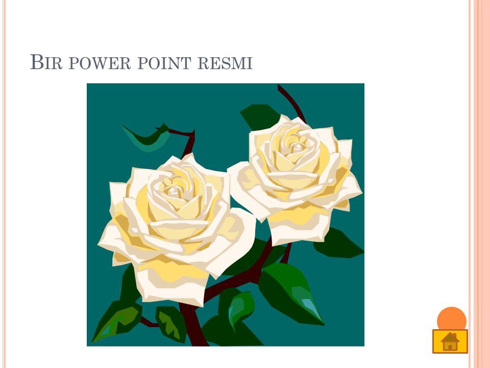 Bir power point resmi