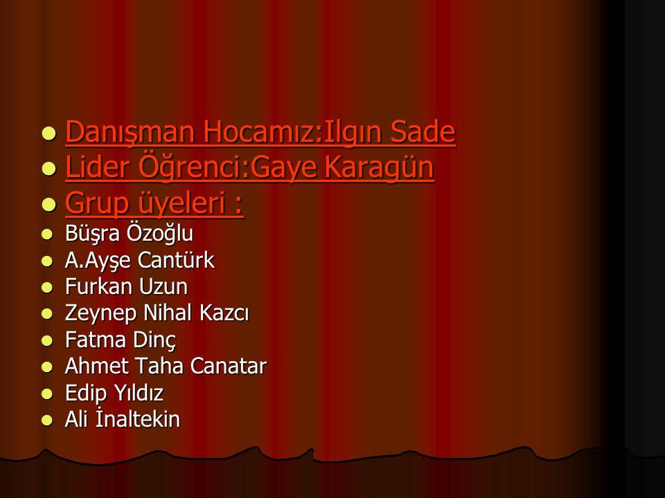 Danışman Hocamız:Ilgın Sade Lider Öğrenci:Gaye Karagün Grup üyeleri :