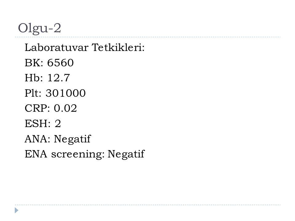 Olgu-2 Laboratuvar Tetkikleri: BK: 6560 Hb: 12.7 Plt: 301000 CRP: 0.02