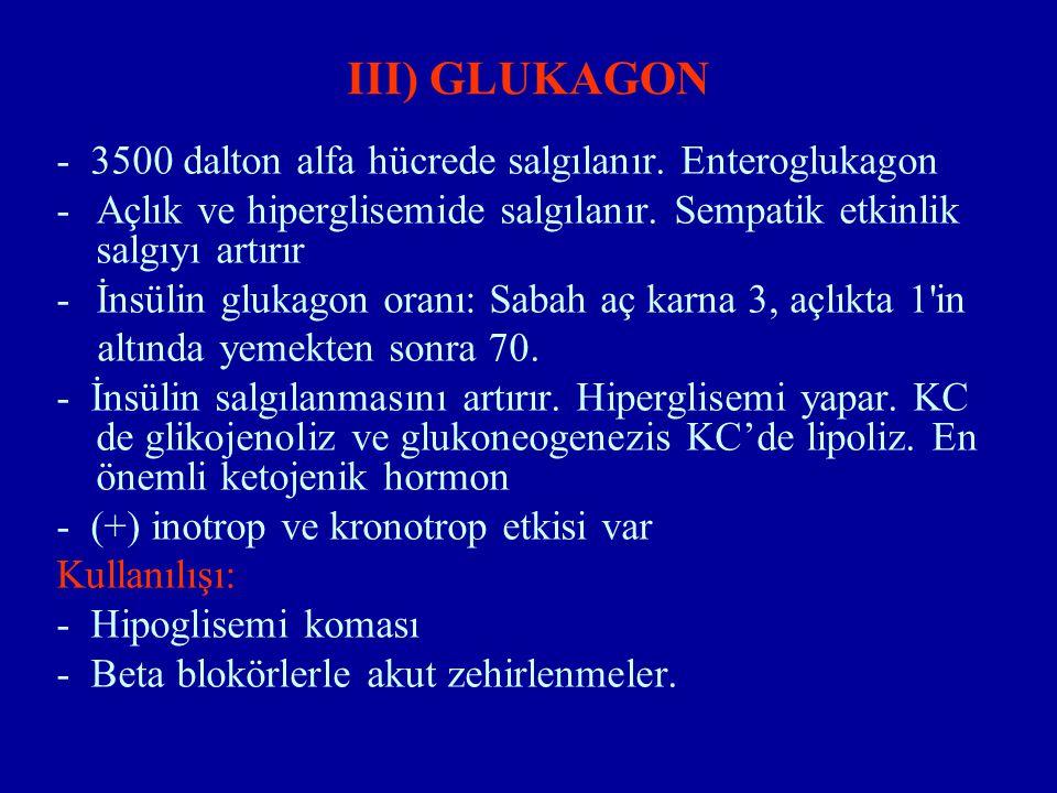 III) GLUKAGON - 3500 dalton alfa hücrede salgılanır. Enteroglukagon