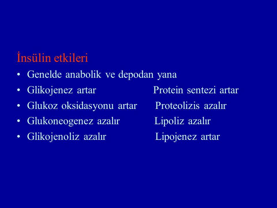 İnsülin etkileri Genelde anabolik ve depodan yana