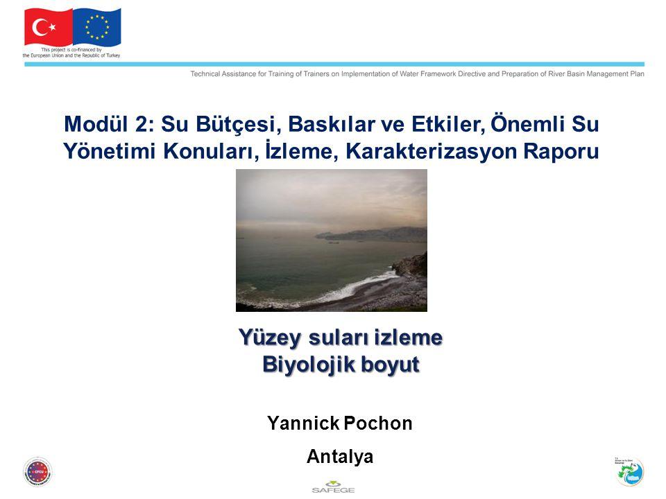 Modül 2: Su Bütçesi, Baskılar ve Etkiler, Önemli Su Yönetimi Konuları, İzleme, Karakterizasyon Raporu
