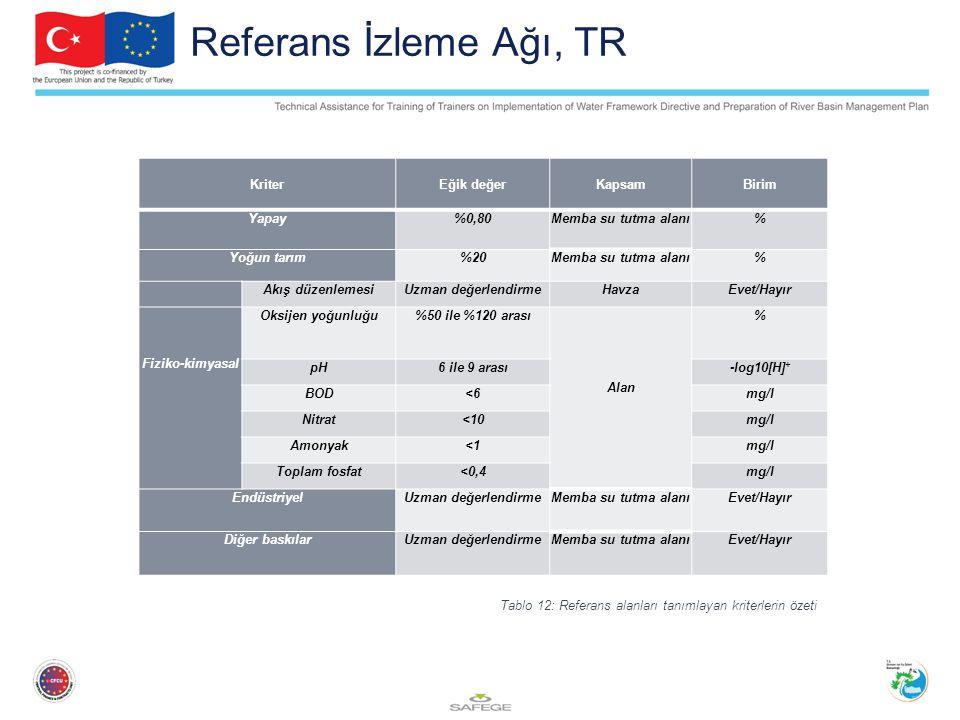 Referans İzleme Ağı, TR Kriter Eğik değer Kapsam Birim Yapay %0,80