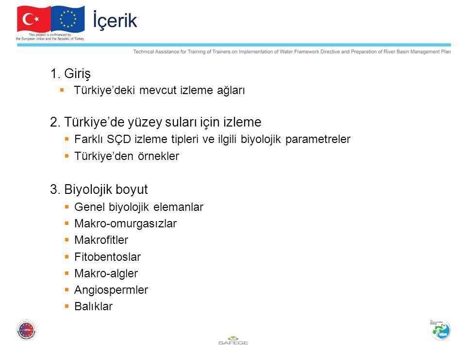 İçerik 1. Giriş 2. Türkiye'de yüzey suları için izleme