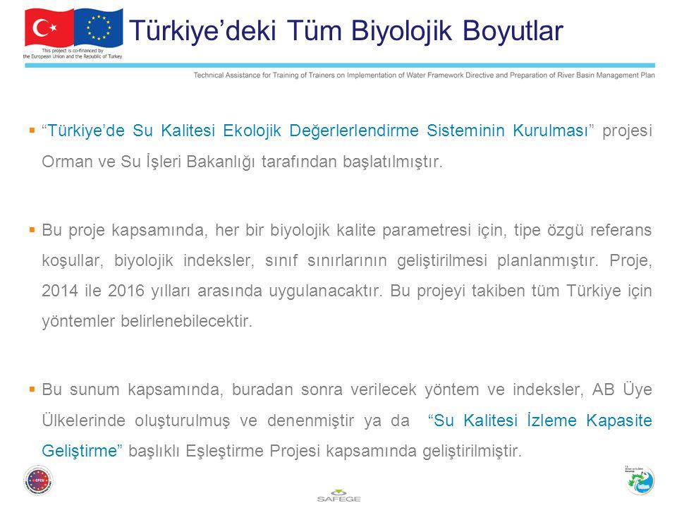 Türkiye'deki Tüm Biyolojik Boyutlar