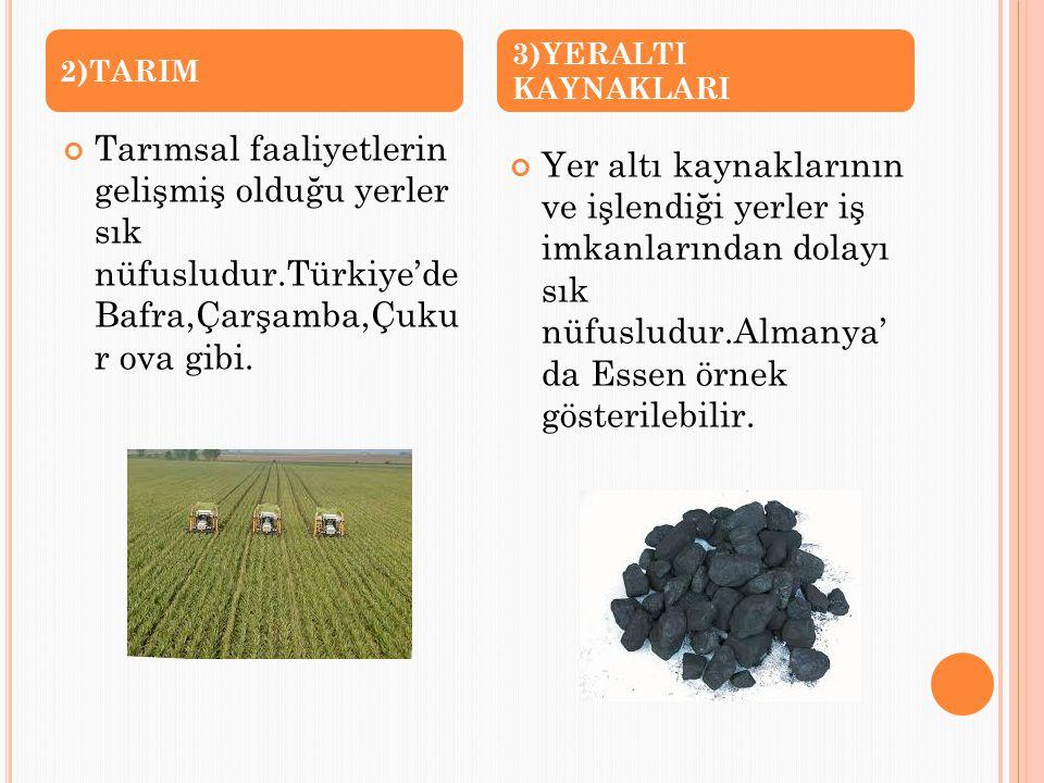 2)TARIM 3)YERALTI KAYNAKLARI. Tarımsal faaliyetlerin gelişmiş olduğu yerler sık nüfusludur.Türkiye'de Bafra,Çarşamba,Çuku r ova gibi.