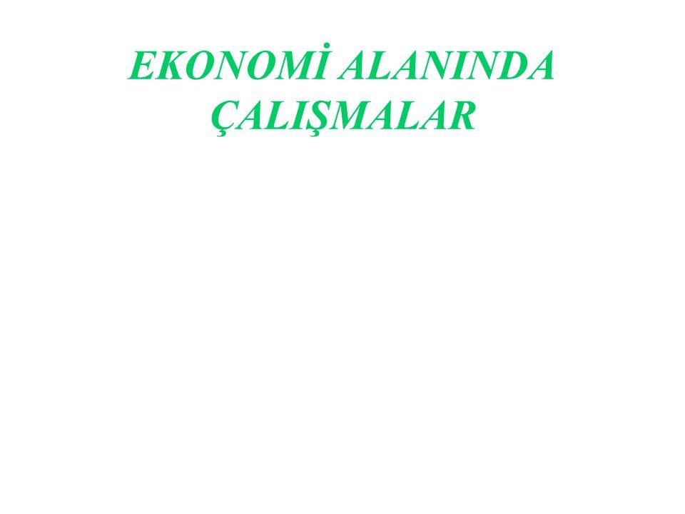 EKONOMİ ALANINDA ÇALIŞMALAR