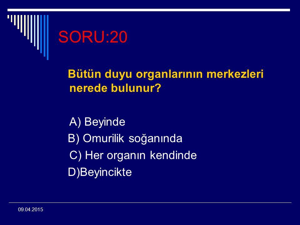 SORU:20 Bütün duyu organlarının merkezleri nerede bulunur A) Beyinde
